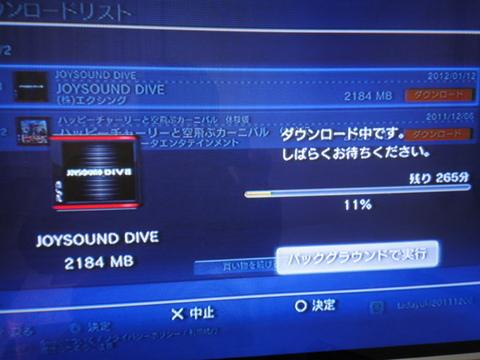 20110112_2.JPG